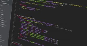 What does a front end web developer do?